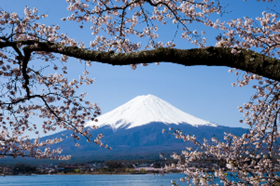 Image of spring in Japan