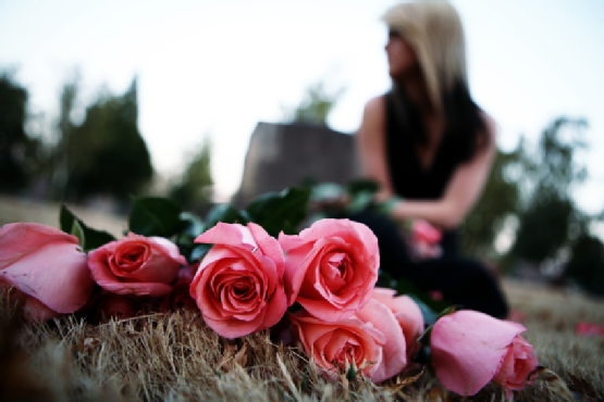 Roses Laid in Cemetery with Bokeh Female
